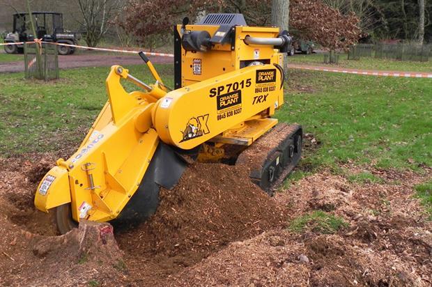 remove tree stumps