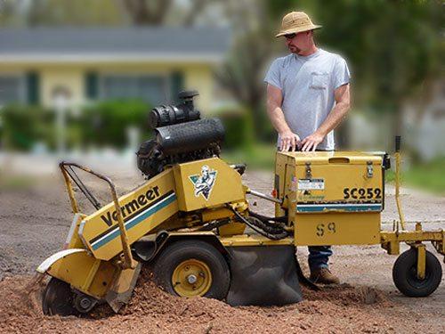 stump grinding staten island